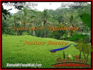 Exotic PROPERTY LAND SALE IN UBUD TJUB490