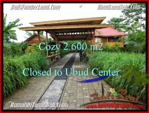 FOR SALE Magnificent PROPERTY LAND IN UBUD TJUB491