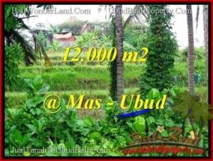 Exotic PROPERTY LAND SALE IN UBUD TJUB492