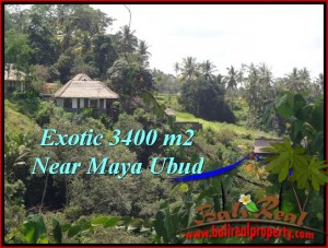 FOR SALE Exotic 3,400 m2 LAND IN UBUD TJUB514