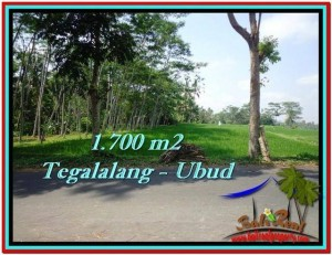 FOR SALE Magnificent PROPERTY 1,700 m2 LAND IN UBUD BALI TJUB518