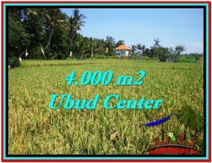 4,000 m2 LAND SALE IN UBUD TJUB527