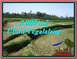 Exotic 2,000 m2 LAND FOR SALE IN UBUD BALI TJUB529