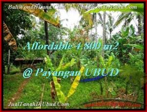 Beautiful 4,800 m2 LAND FOR SALE IN Ubud Payangan TJUB486