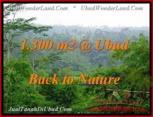 FOR SALE Exotic LAND IN Ubud Tegalalang BALI TJUB481