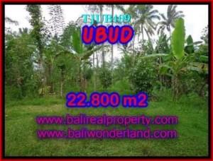 Beautiful LAND SALE IN Ubud Tegalalang BALI TJUB409