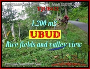 FOR SALE Beautiful PROPERTY LAND IN UBUD TJUB422