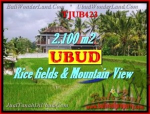 Beautiful LAND FOR SALE IN UBUD TJUB423