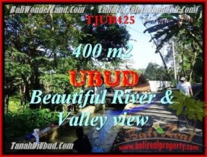 Affordable PROPERTY LAND IN UBUD FOR SALE TJUB425