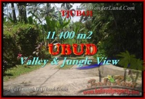 FOR SALE 11,400 m2 LAND IN UBUD TJUB431