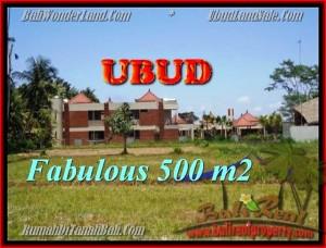 Magnificent PROPERTY UBUD LAND FOR SALE TJUB435