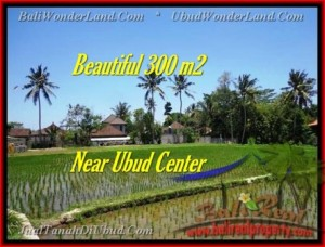 Magnificent 300 m2 LAND IN UBUD BALI FOR SALE TJUB436