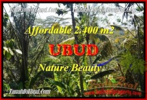 Affordable Ubud Pejeng LAND FOR SALE TJUB454