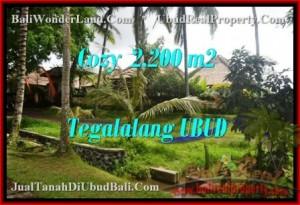 Exotic 2,200 m2 LAND IN UBUD BALI FOR SALE TJUB462