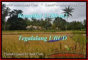 Exotic 3,280 m2 LAND IN UBUD BALI FOR SALE TJUB463