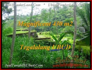 Affordable Ubud Payangan BALI LAND FOR SALE TJUB466