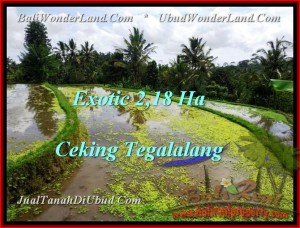 LAND IN Ubud Tegalalang BALI FOR SALE TJUB471