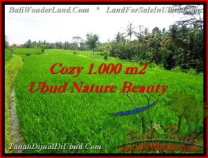 FOR SALE Exotic LAND IN Ubud Tegalalang BALI TJUB478