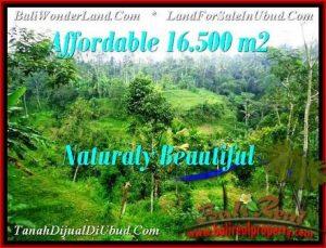 Beautiful PROPERTY LAND FOR SALE IN UBUD BALI TJUB494