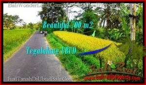 Exotic 700 m2 LAND SALE IN UBUD BALI TJUB497