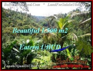 Magnificent PROPERTY 1,500 m2 LAND SALE IN Ubud Tegalalang TJUB503