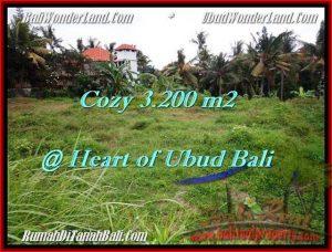 Magnificent PROPERTY 3,200 m2 LAND SALE IN Sentral Ubud TJUB510