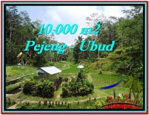 UBUD BALI 10,000 m2 LAND FOR SALE TJUB519