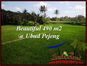 FOR SALE LAND IN Ubud Tampak Siring BALI TJUB512