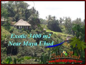 Magnificent LAND IN UBUD FOR SALE TJUB514