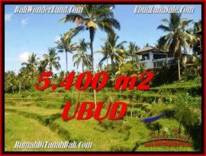 Beautiful 5,400 m2 LAND SALE IN UBUD BALI TJUB550