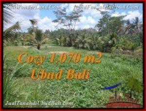 Affordable PROPERTY 1,070 m2 LAND SALE IN UBUD BALI TJUB536