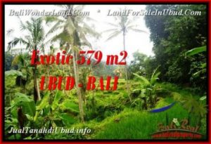 Exotic PROPERTY LAND IN UBUD FOR SALE TJUB538