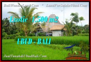 FOR SALE Exotic 1,500 m2 LAND IN UBUD BALI TJUB541