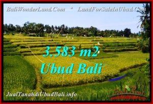 LAND SALE IN Ubud Pejeng BALI TJUB542