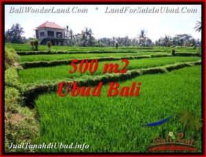 Beautiful PROPERTY LAND SALE IN UBUD TJUB543