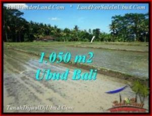 Magnificent PROPERTY 1,050 m2 LAND FOR SALE IN Sentral Ubud TJUB544