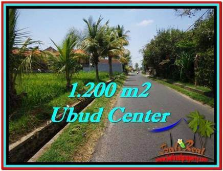 Affordable 1,200 m2 LAND SALE IN UBUD BALI TJUB525