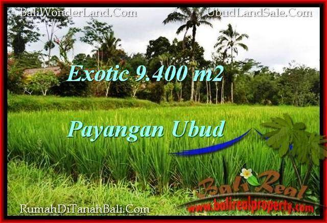 Beautiful PROPERTY 9,400 m2 LAND FOR SALE IN Ubud Payangan BALI TJUB526