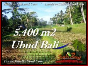Magnificent PROPERTY 5,400 m2 LAND IN Ubud Payangan FOR SALE TJUB554