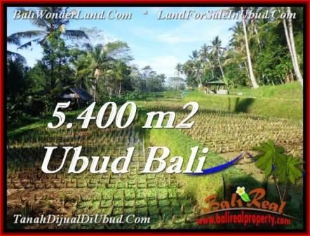 Ubud Payangan BALI LAND FOR SALE TJUB554
