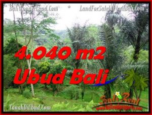 Exotic PROPERTY Ubud Tegalalang 4,040 m2 LAND FOR SALE TJUB555