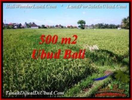 Exotic PROPERTY LAND IN UBUD FOR SALE TJUB553