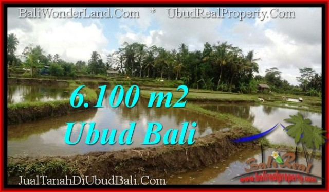 Beautiful UBUD BALI 6,100 m2 LAND FOR SALE TJUB547