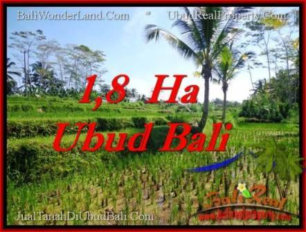 LAND IN Ubud Payangan BALI FOR SALE TJUB553