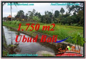 Magnificent PROPERTY UBUD LAND FOR SALE TJUB557