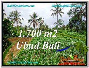 Affordable 1,700 m2 LAND FOR SALE IN UBUD BALI TJUB560