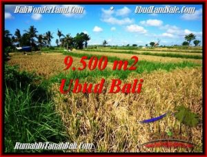 FOR SALE Affordable LAND IN UBUD TJUB548