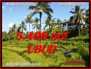 Affordable PROPERTY 5,400 m2 LAND SALE IN Ubud Tegalalang TJUB550