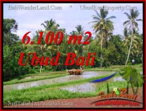 Exotic LAND IN UBUD FOR SALE TJUB552