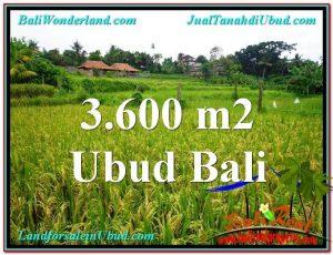 Affordable 3,600 m2 LAND SALE IN UBUD TJUB566